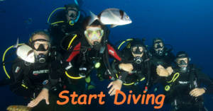 cover_pic_start_diving