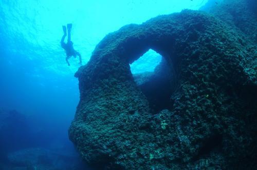 Cirkewwa Reef - Curtis Wee